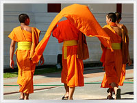young Buddhist monks in Thailand