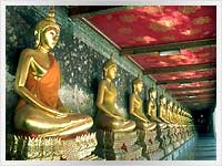 a collection of statues of the meditating buddha
