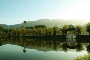 taiping-lake-garden-malaysia-53452076